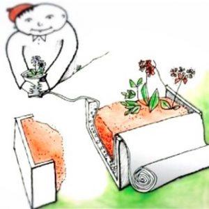 защита корня